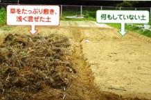 「菌ちゃん農法」