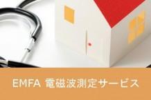 EMFA 電磁波測定サービス