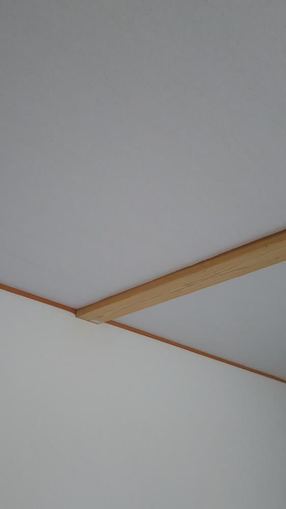 壁:貝てき漆くい+天井:オガファーザー