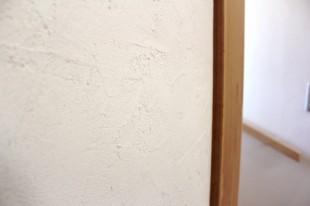 貝てき漆くい 仕上げ面3